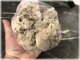 Korallensand mittlere Körnung 4-5 mm