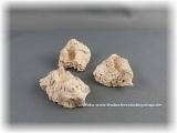 ARKA Ablegersteine klein